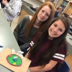 Cell models