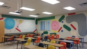 Can you create a cell if it were the size of a classroom?